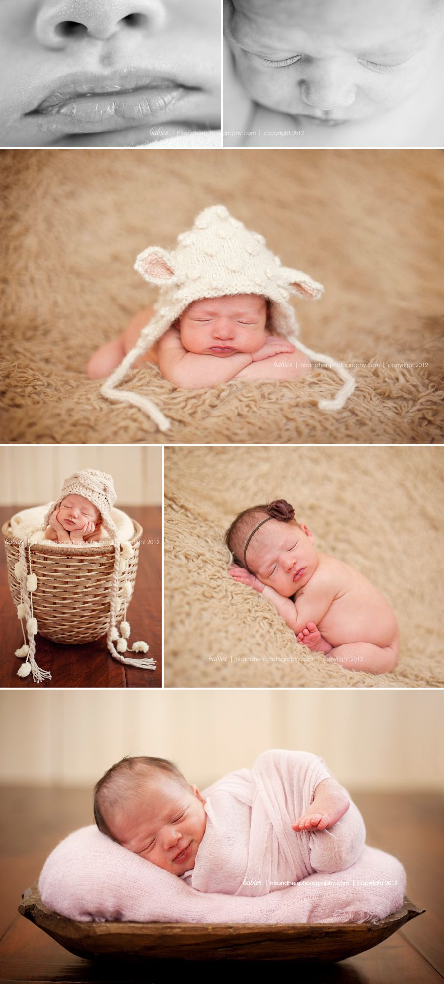 des moines iowa ames iowa newborn photographer baby pictures photo studio