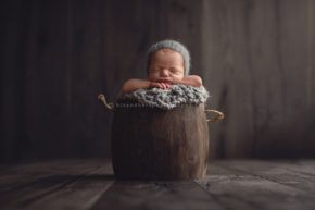 des moines iowa newborn photographer adel waukee best newborn photographer iowa