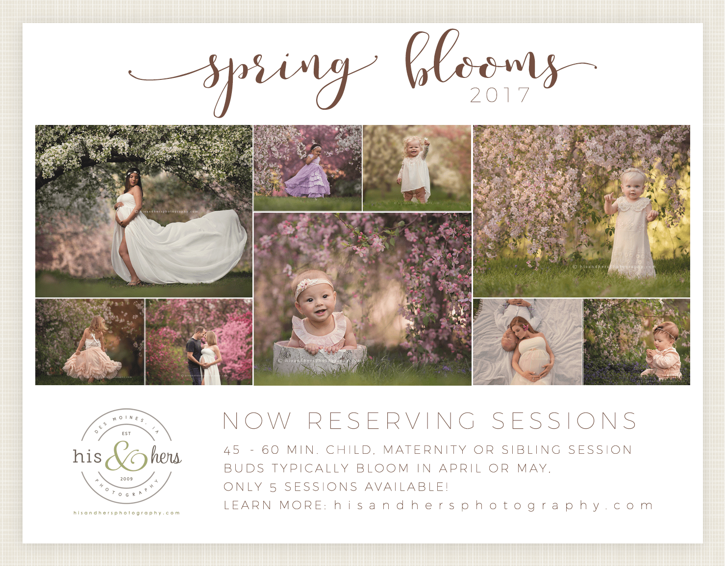 Now Booking | Spring Blooms Sessions
