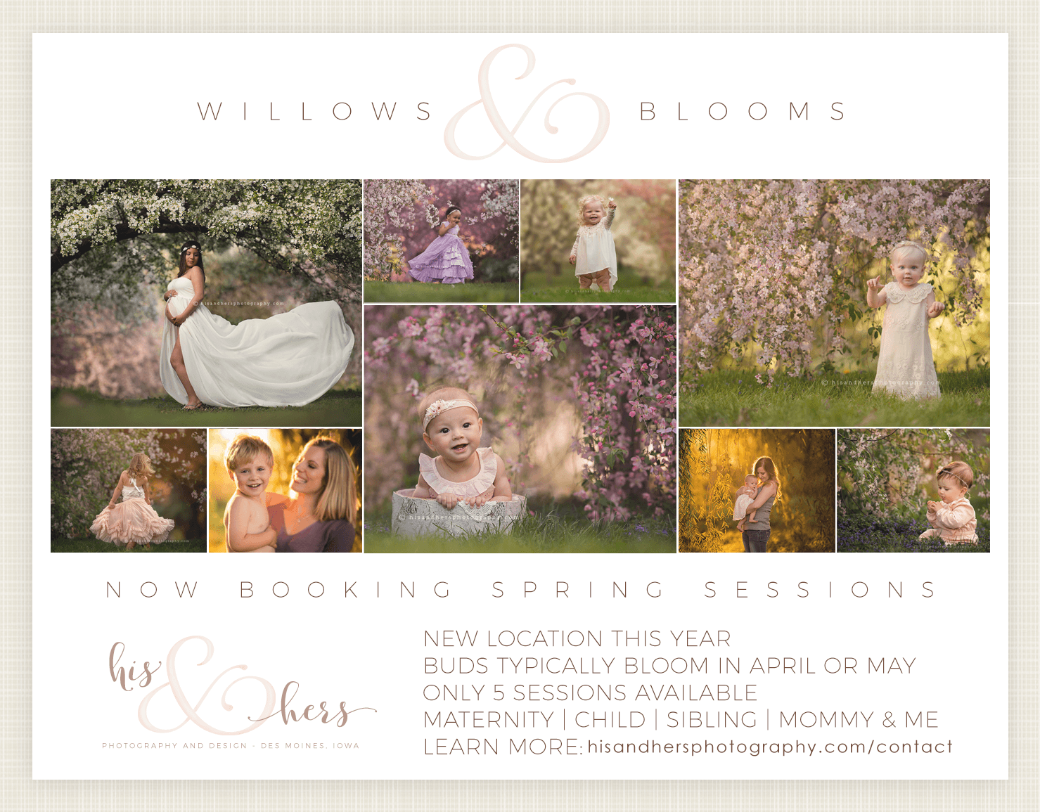 2019 Spring sessions | Willows & Blooms